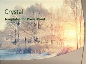 Beautiful theme featuring winter trees tranquil winter nature backdrop and a soft green colored foreground.