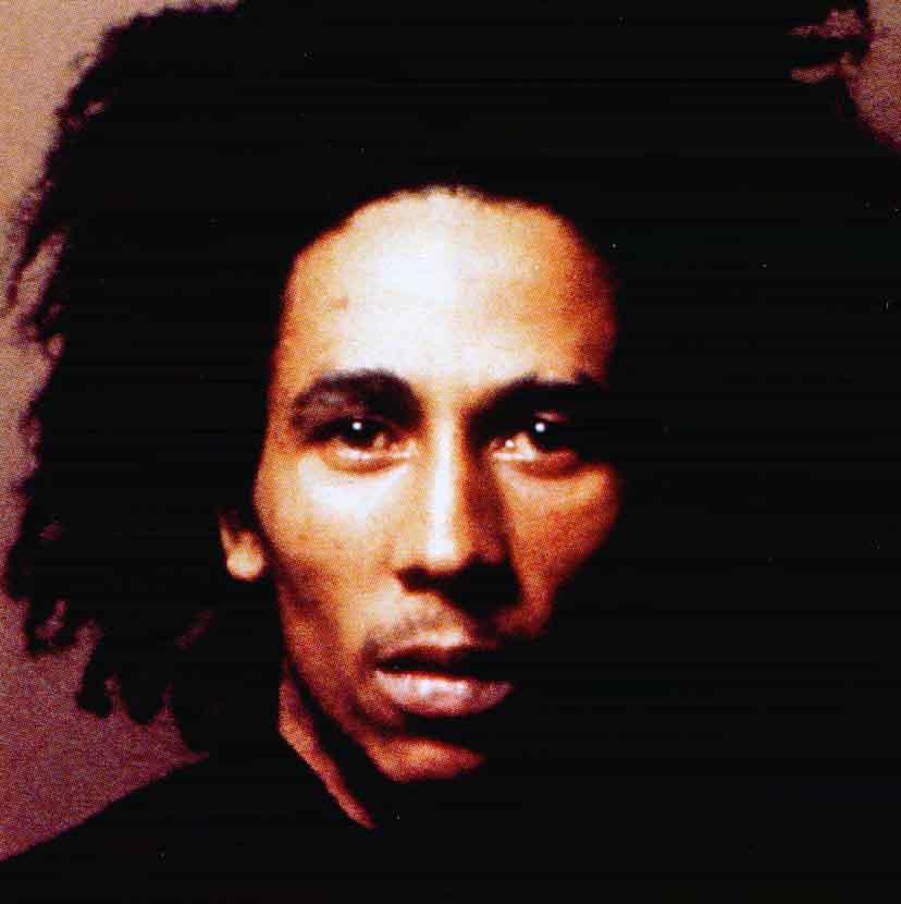 Bob Marley The Reggae Master
