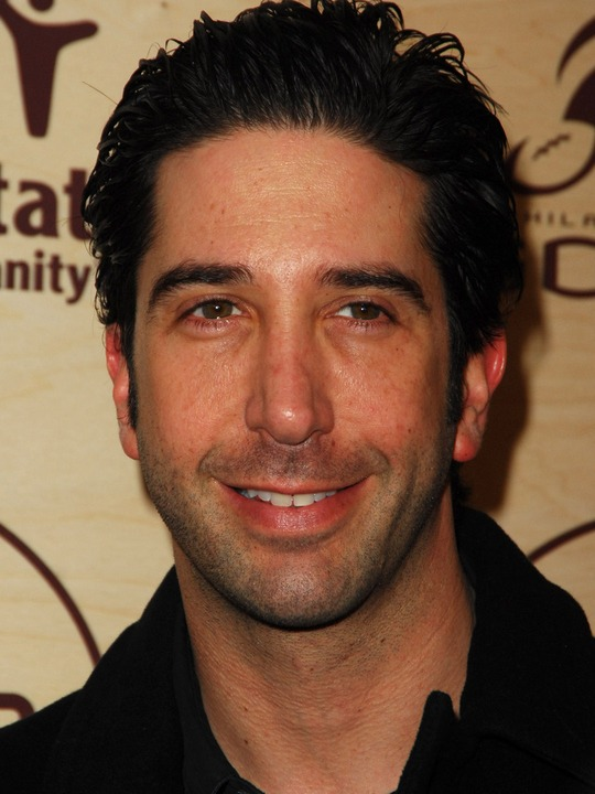 david schwimmer movies