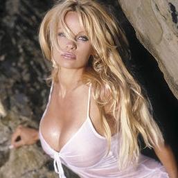 Pamela Anderson Sexy Vixen
