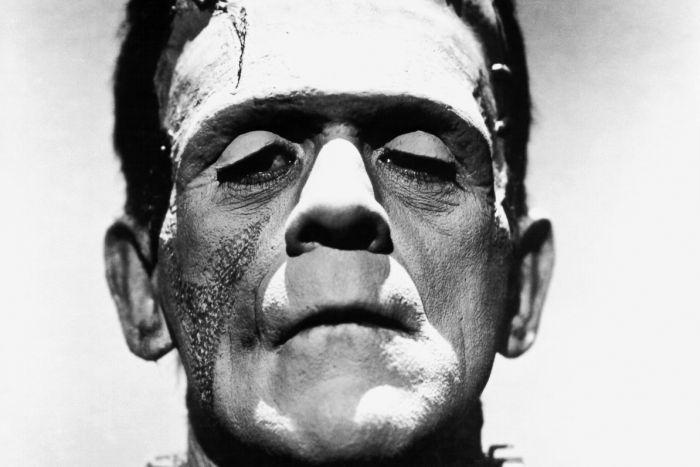 Frankenstein  The Novel