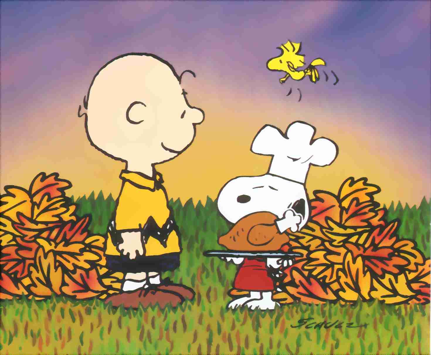 Peanuts Good Grief Charlie Brown