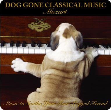 Classical Music Basics