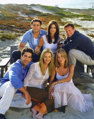 Friends TV Sitcom Season Eight Facts