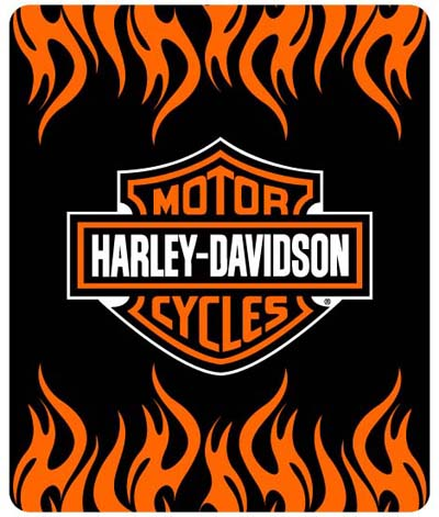 Harley Davidson American Iron Horse