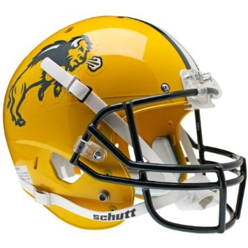 North Dakota State Bison Football History  Facts