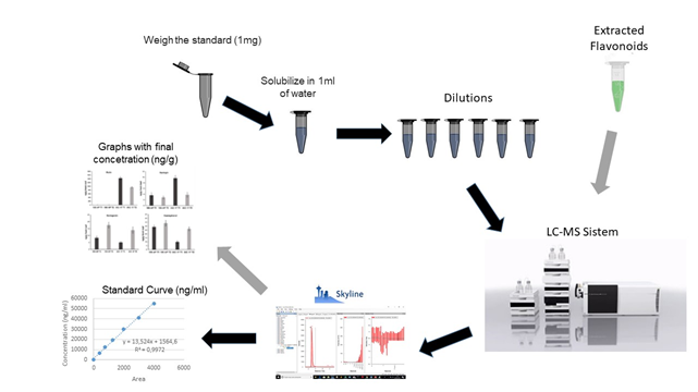 FLAVONOID PROFILING BY LIQUID CHROMATOGRAPHY COUPLED TO MASS