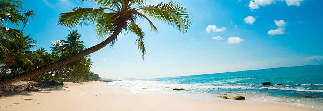 Royal Holiday - ¡Reserva en Paradise Beach Villas, un destino feliz e inteligente! - Olvídate de los problemas y disfruta tu estancia a solo unos pasos de Eagle Beach.