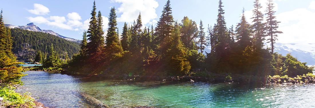 Royal Holiday - ¡Descubre Whistler que es, super natural! - Disfruta en The Westin Resort & Spa Whistler, resort #1 de ski en Norteamérica.