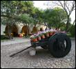 Royal Holiday - Hacienda Jurica