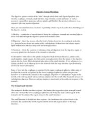 digestive-system-physiology-summary