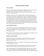 sensory-systems-summary