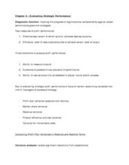 evaluating-strategic-profit-performance-ch-6