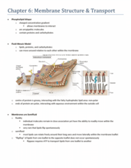 chapter-6-membrane-structure-transport