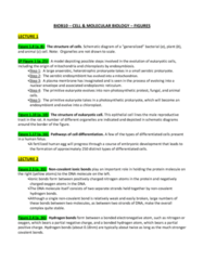 lecture-1-6-figure-summaries-and-additional-information