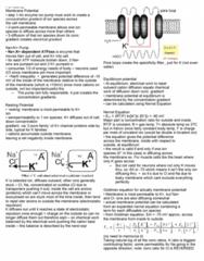 lecture-2-membrane-potential
