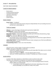lecture-9-summary-neuroplasticity