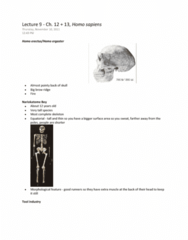 lecture-9-ch-12-13-homo-sapiens-chapter-summary-key-terms