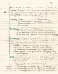 sts-200-final-review-notes