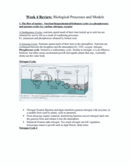 week-4-lecture-notes-biological-processes-and-models