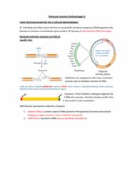 biol-200-notes-after-midterm-pdf