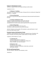 chapter-22-the-respiratory-system-anatomy-doc