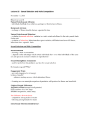 lecture-18-docx