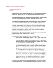 psych-1000-chapter-3-review-notes-docx
