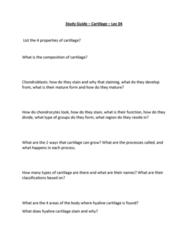 study-guide-cartilage-lec-04-docx