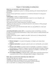 chapter-4-understanding-accounting-issues-docx