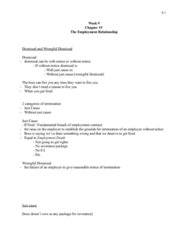 week-9-chapter-19-the-employment-relationship-doc