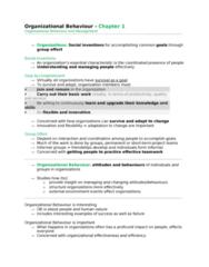 organizational-behaviour-ch-1-doc