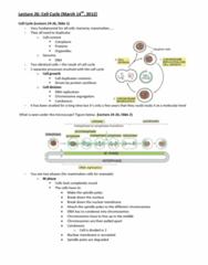 bioc-212-lecture-26-docx