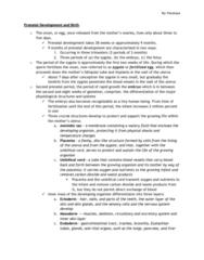 chapter-3-prenatal-development-and-birth-docx