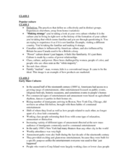 pop-culture-lecture-notes-docx