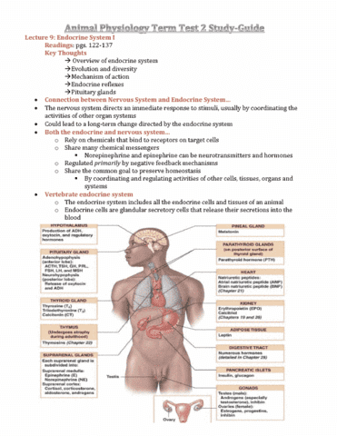 Animal Physiology (BIOB34) Term Test 2 Study - OneClass