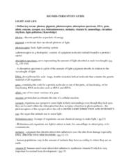 bio-mid-term-study-guide-docx