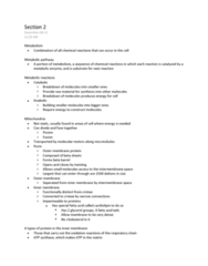 section-2-docx