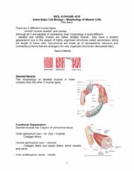 biol-4510-lecture-4-cell-biology-pdf