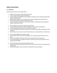 module-7-sensory-systems-docx