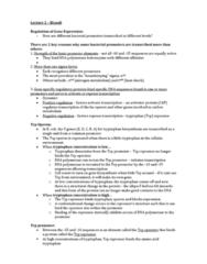 lecture24-brandl2-docx