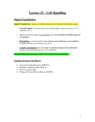 cell-signalling-docx