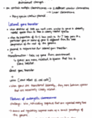 final-exam-notes-ch-16-20