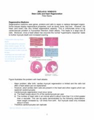 biol-4510-lecture-19-stem-cells-2-pdf