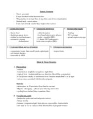 parasites-enteric-protozoa-summary-docx
