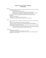 skin-histology