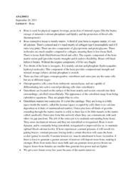 lecture-6-bone