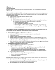 ps101-chapter-4-5-6-docx