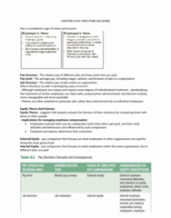 chapter-8-pay-structure-decisions-docx