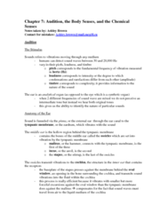 chapter-7-notes-docx
